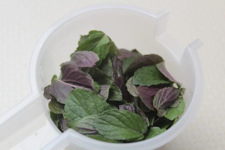 Pfefferminz einer englischen Pfefferminzpflanze
